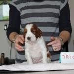 Trio 3 weeks, v smart little man (4)