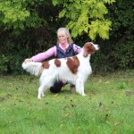 Gundog Society of Wales BCC